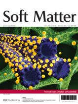"""Giant hollow fiber formation through self-assembly of oppositely charged polyelectrolyte brushes and gold nanoparticles"", Soft Matter, 2013, 9, 9111"