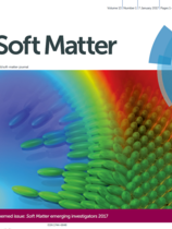 """Multiscale directed self-assembly of composite microgels in complex electric fields"", Soft Matter, 2017, 13, 88"