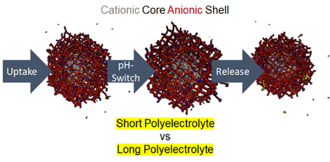 pic showing polyelectrolyte