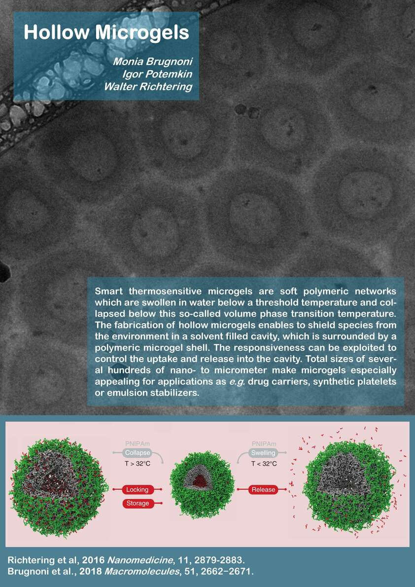 Biosoft-Poster Hollow Microgels